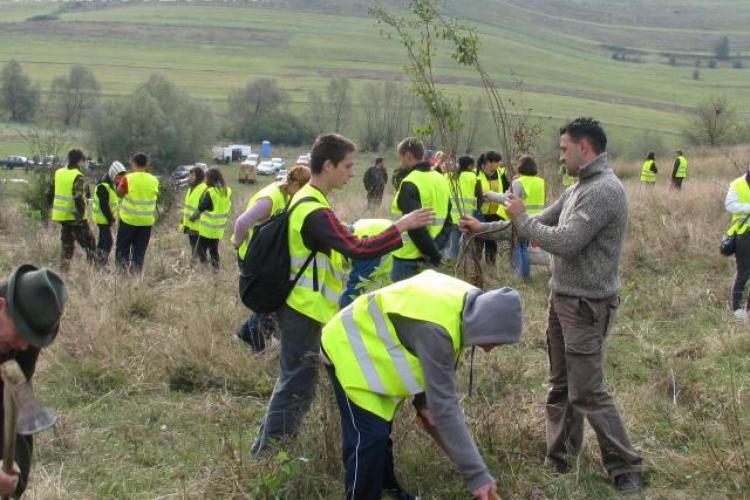 Un hectar de teren din Palatca, reimpadurit sambata de 350 de voluntari - VIDEO si FOTO