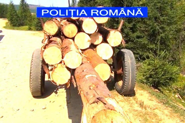 Clujean prins cu un camion plin de lemne tăiate ilegal