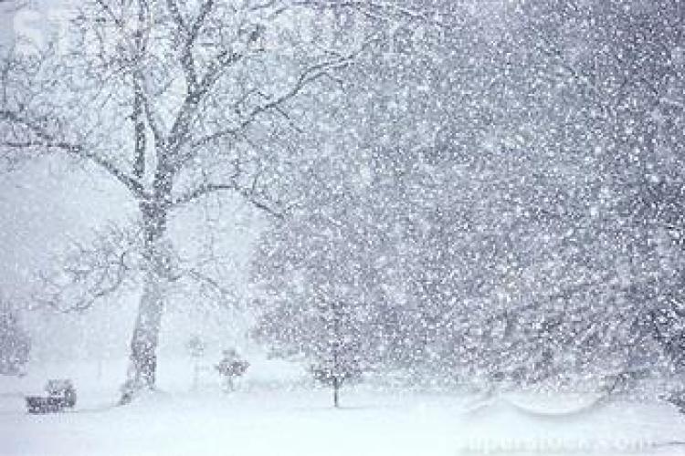 A căzut prima ninsoare din an în România. Vezi unde