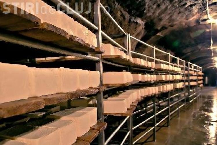 """Mesajul fermierilor care produc celebra brânză de Năsal: """"Ne-ar ajuta dacă românii ar cumpăra brânză făcută de români, din lapte românesc"""""""