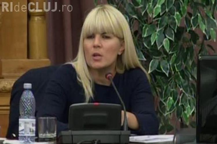 Elena Udrea propune arestul de weekend pentru a combate supraaglomerarea închisorilor