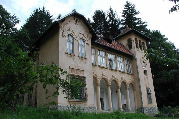 Castelul Goga de la Ciucea a fost pierdut definitiv. Consiliul Județean Cluj a pierdut procesul