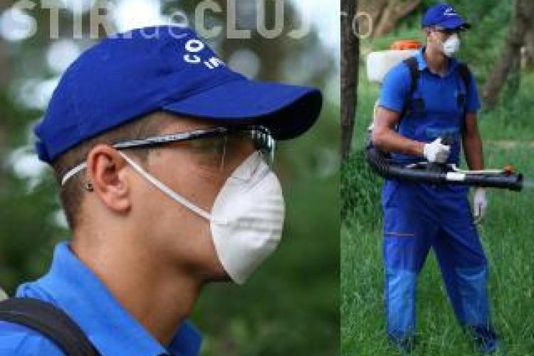 Cluj: Acțiune de dezinsecție și deratizare pe domeniul public