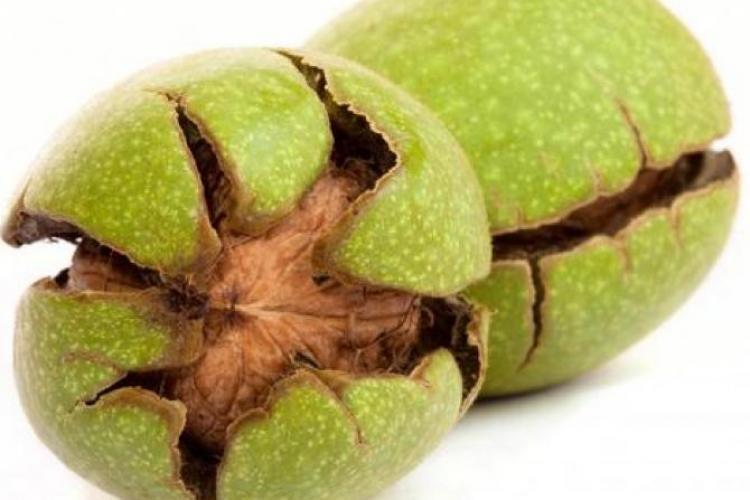 Coaja verde de nucă o aruncăm, dar ce EFECTE miraculoase are pentru afecțiuni ale stomacului