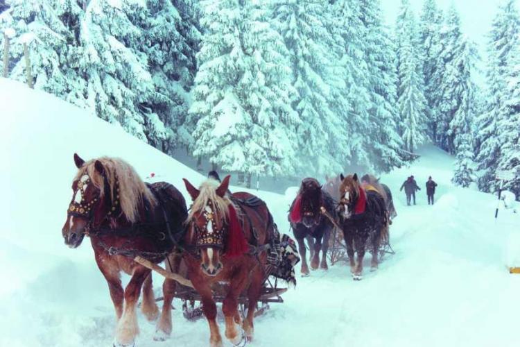 Revelion de poveste în Maramureș, cu sănii trase de cai și acces la piscină. Ofertă Early booking (P)