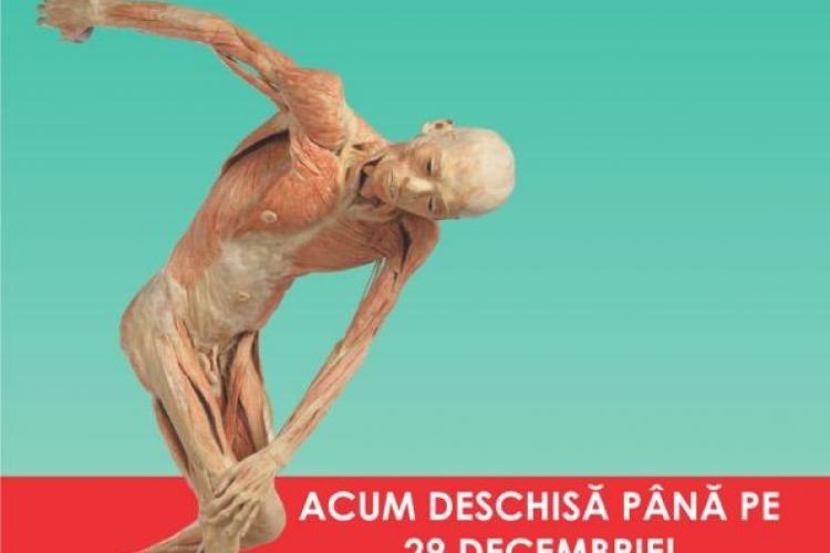 """Expoziția """"OUR BODY: Universul Interior"""", de la Iulius Mall Cluj, se prelungește până la sfârșitul lunii decembrie (P)"""