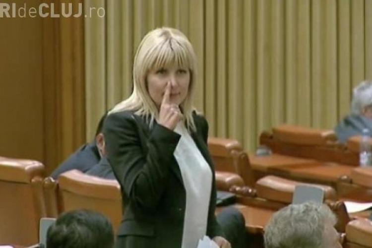 Elena Udrea NU va fi ARESTATĂ de DNA, pentru că deputații s-au opus