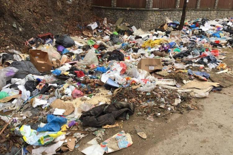 Dezastru în zona pârâurilor de la Someșul Rece: De luni de zile e plin de gunoaie și nimeni nu face nimic FOTO