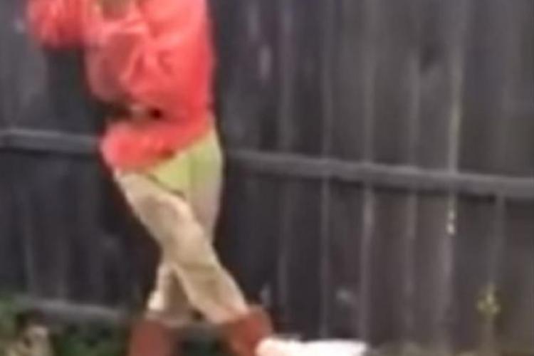 """Ce s-a întâmplat cu cainele Papi, din viralul """"Bă Cristi!"""" - VIDEO"""