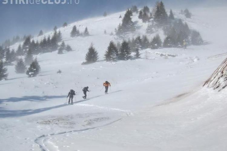 COD GALBEN de vijelie puternică în zona de munte a Clujului. Vântul va sufla cu peste 100 km/h