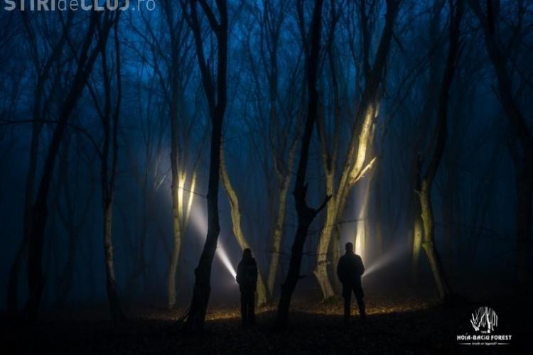 Documentar despre Pădurea Hoia-Baciu și misterele paranormale - TRAILER