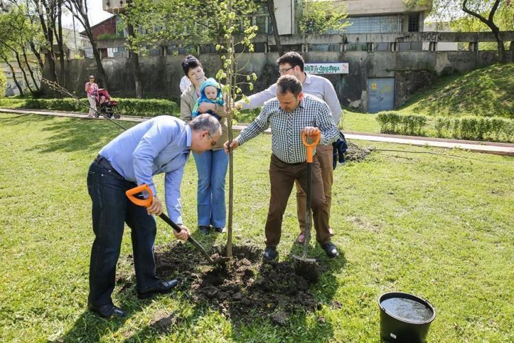 """La Cluj se continuă proiectul """"un copil-un arbore"""". Se plantează peste 200 de copaci"""
