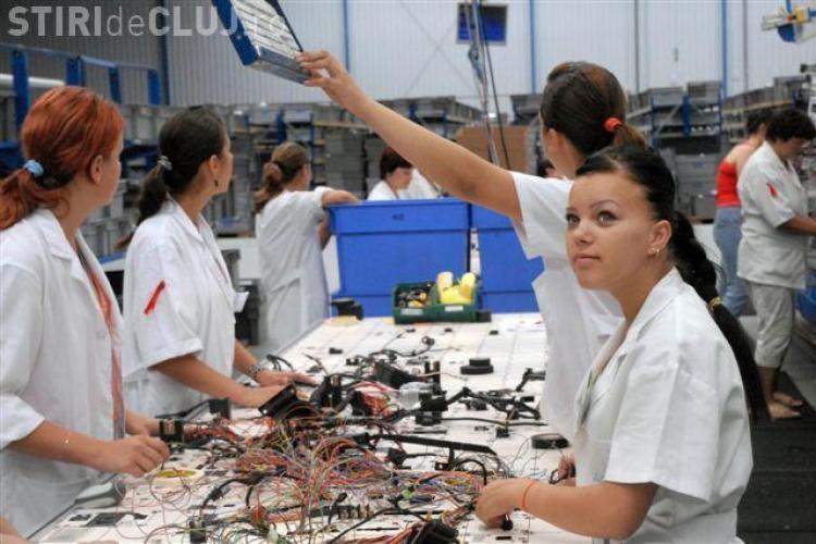 630 de locuri de munca nou create de Fujikura Automotive la Cluj - FOTO