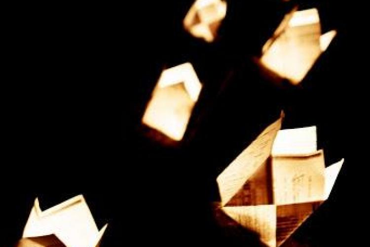 """Parcul Central va fi luminat de zeci de mii de """"gluguțe"""", în cadrul Festivalului Luminii. Vezi când va avea loc"""