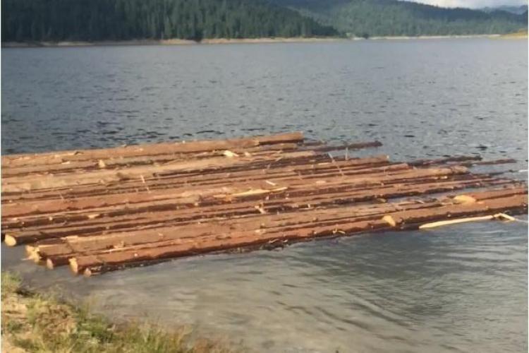 Clujeni prinși la furat de lemne. Transportau buștenii cu barca FOTO
