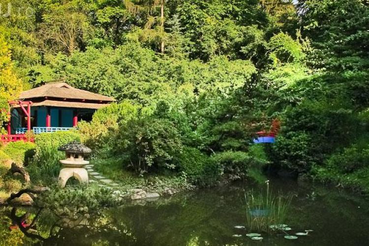 Spectacole de operă în Mănăștur și la Grădina Botanică. Intrarea este liberă