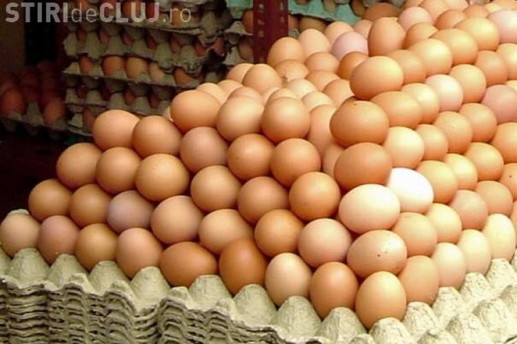 Polonezii ne invadează cu ouă suspecte! Cum să le recunoști