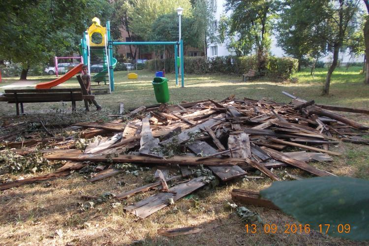 Cluj-Napoca - Au transformat un parc în depozitul lor de deșeuri - FOTO