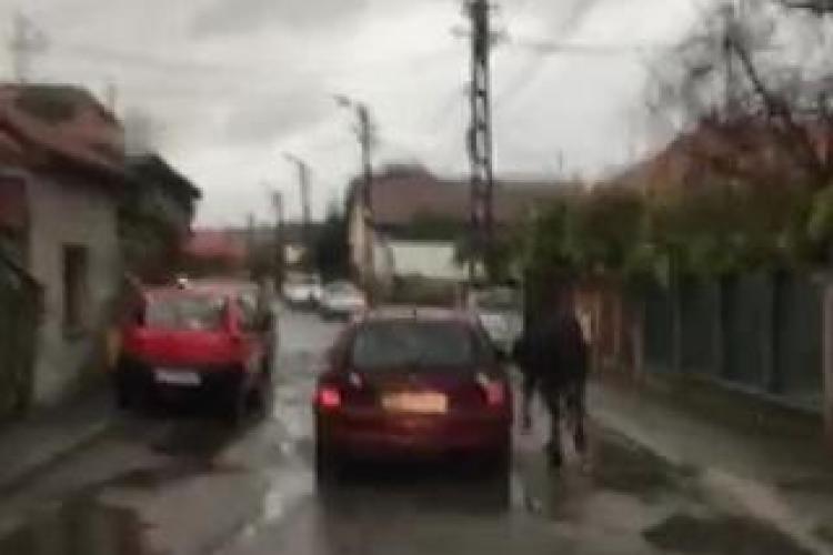 Imagini INCREDIBILE din Gherla: Atât suntem de necivilizați! - VIDEO