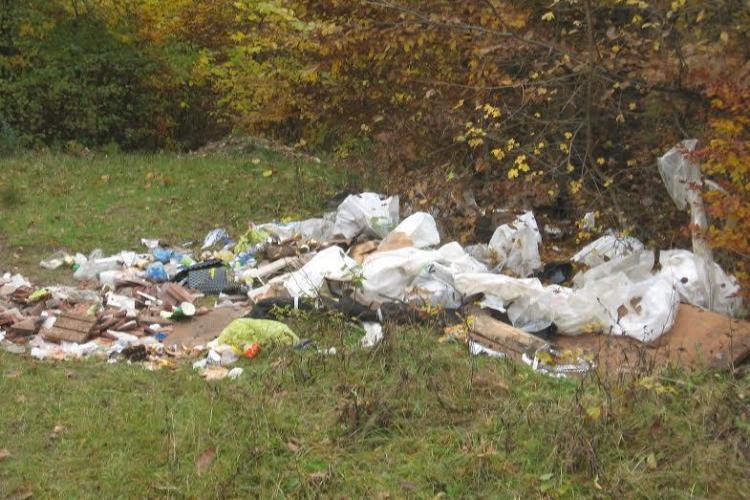 Clujean amendat după ce a depozitat ilegal deșeuri în pădurea Făget