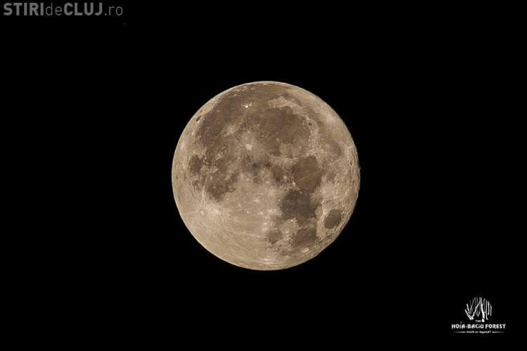 Super-luna văzută din pădurea Hoia Baciu - FOTO