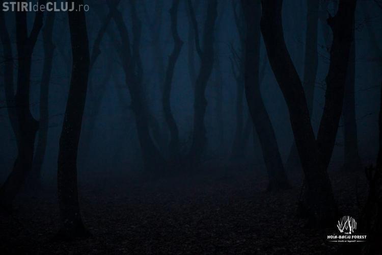 OZN în Pădurea Baciu? O dronă a filmat un obiect care se deplasează cu 400 m pe secundă - VIDEO