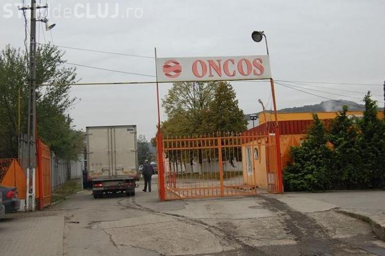 Florești - Patru persoane au fost puse sub control judiciar, după perchezițiile de la fermele de pui