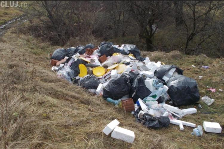 Depozitare ilegală de deșeuri în pădurea Făget