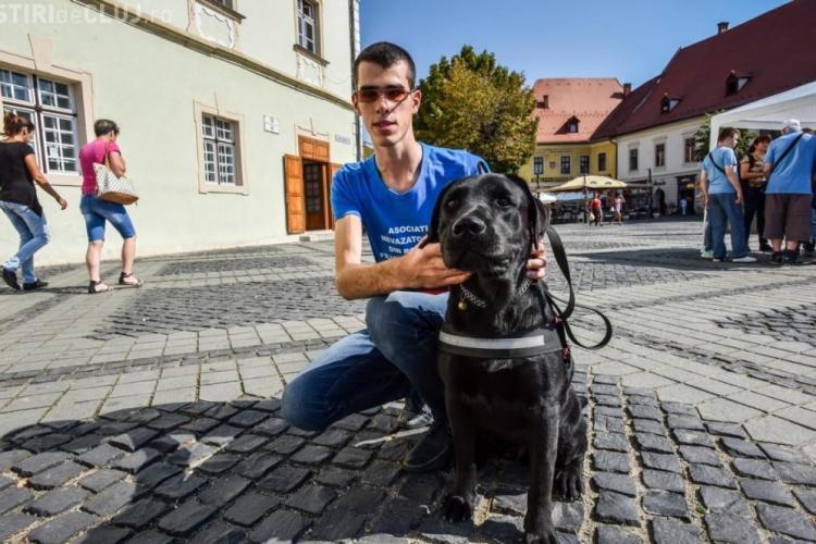Nici taximetriștii din Cluj nu-s mai BUNI! Au refuzat transportul unui tânăr nevăzător și a câinelui ghid