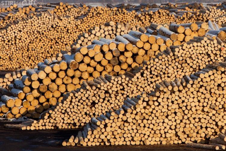 Forest Stewardship Council a retras definitiv certificarea Schweighofer