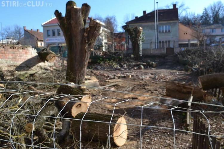 Cluj-Napoca: Prima Grădină Botanică a orașului, TĂIATĂ pentru a fi construit un hotel - FOTO