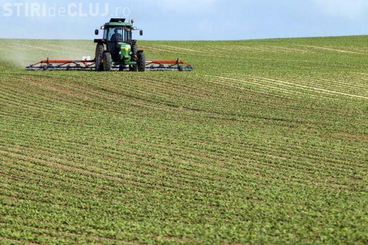 PSD Cluj: Credite garantate de stat pentru fermieri. Vor putea cumpăra terenuri