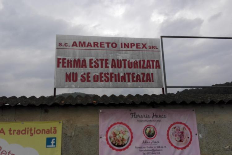 Florești: Bloc AVIZAT la 11,3 metri de ferma de pui, cu aprobare de la mediu și studiu de impact asupra sănătății