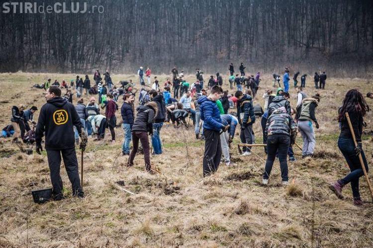 Tăşuleasa Social Filiala Cluj plantează mii de puieți