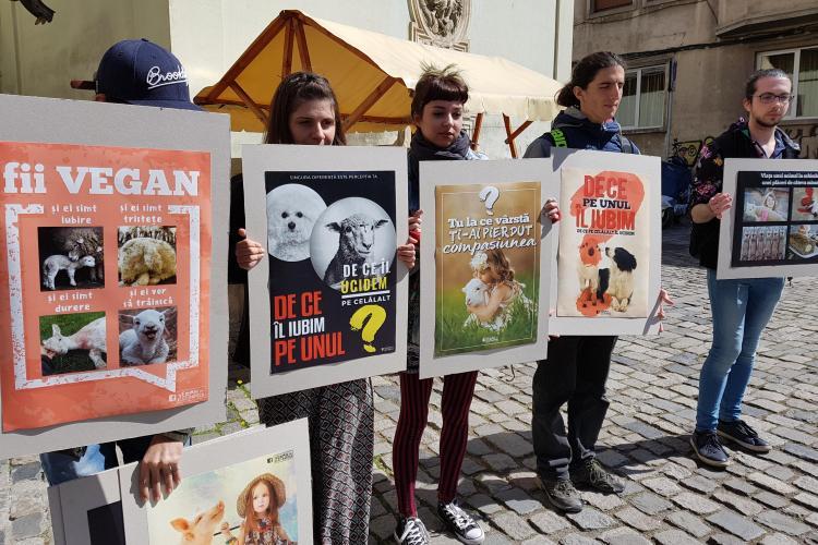 Cluj - Protest față de sacrificarea mieilor de Paște - VIDEO
