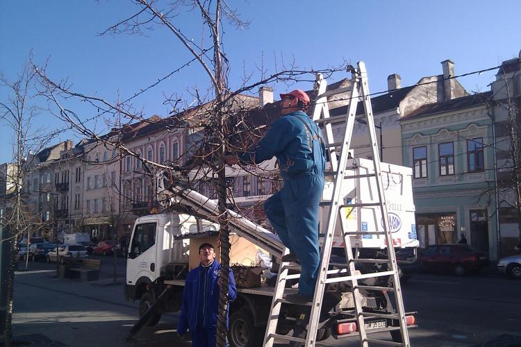 La Cluj, se monteaza deja instalatiile luminoase de sarbatori! FOTO