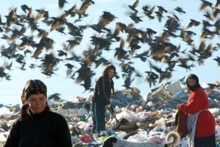 ONG -ul care se ocupă de relocarea romilor de la Pata Rât a cheltuit 1,3 milioane de euro pe SALARII