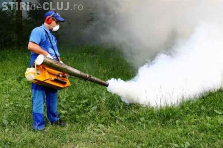 Cluj-Napoca: Coral face o nouă acțiune de dezinsecţie pe domeniul public și privat