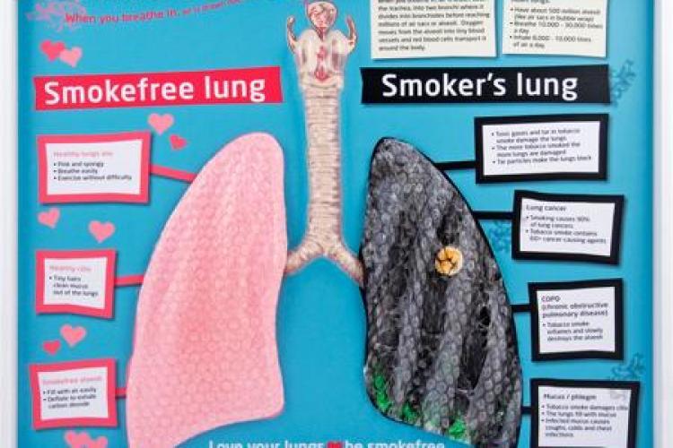 Fumătorii trebuie să consume aceste alimente. Curăță plămânii de nicotină