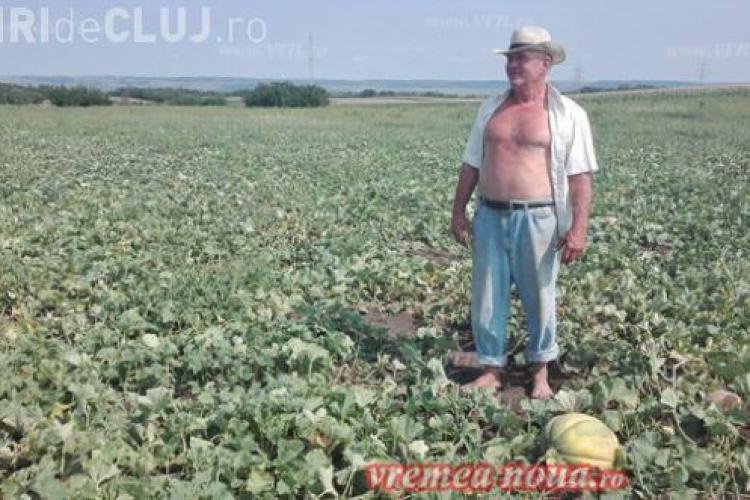 Fermier român amendat pentru că produce pepeni prea mari
