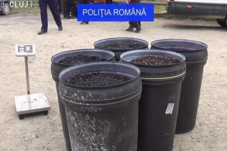 Deputatul USR Cluj, Adrian Dohotaru, a făcut plângere penală împotriva celor care culeg fructe de pădure