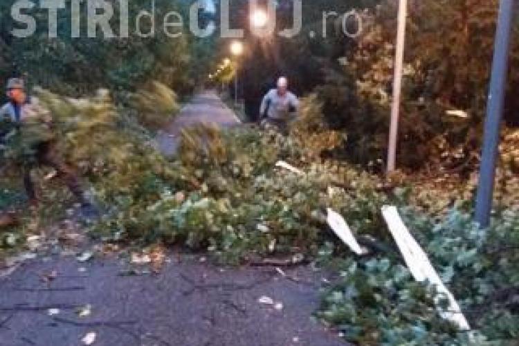 Recomandările ISU Cluj, pe timp de furtună. Ce trebuie să faci