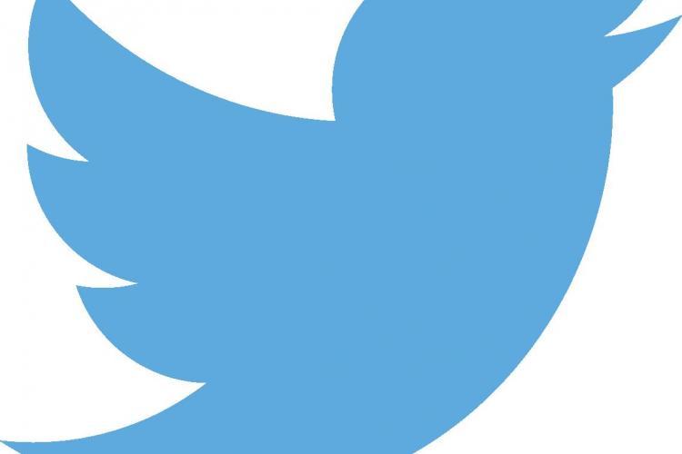 Twitter a închis aproape 300.000 de conturi în doar jumătate de an. Care sunt motivele rețelei sociale