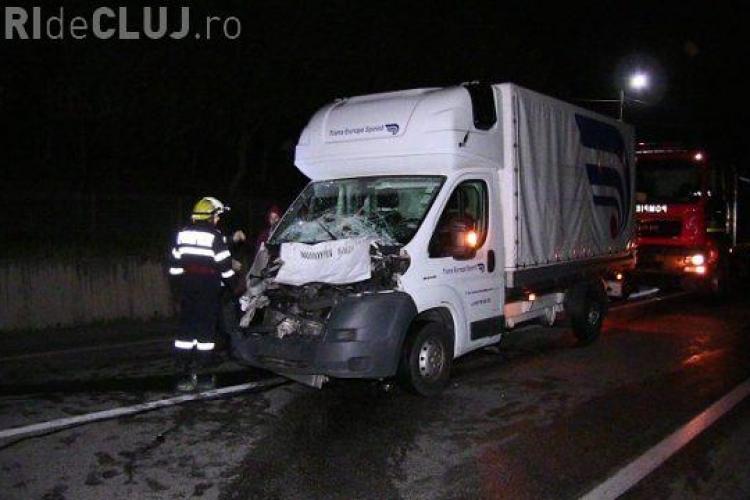 CLUJ: Scenă dramatică la Bunești. O bivoliță, care traversa strada alături de pui, a fost lovită mortal de un șofer VIDEO
