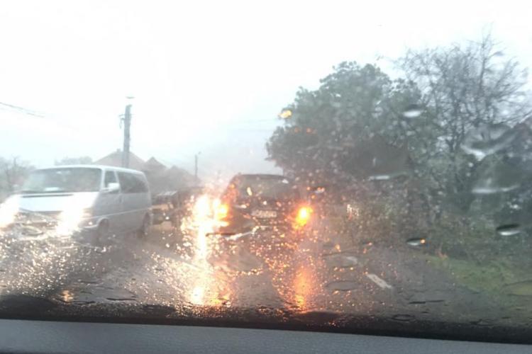 Furtună puternică la Negreni! Copaci căzuți pe drum - FOTO