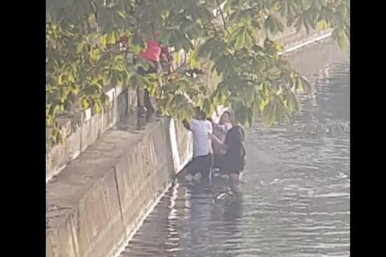 Jos pălăria clujeni! Oamenii au sărit în Someș să salveze un cățel - VIDEO