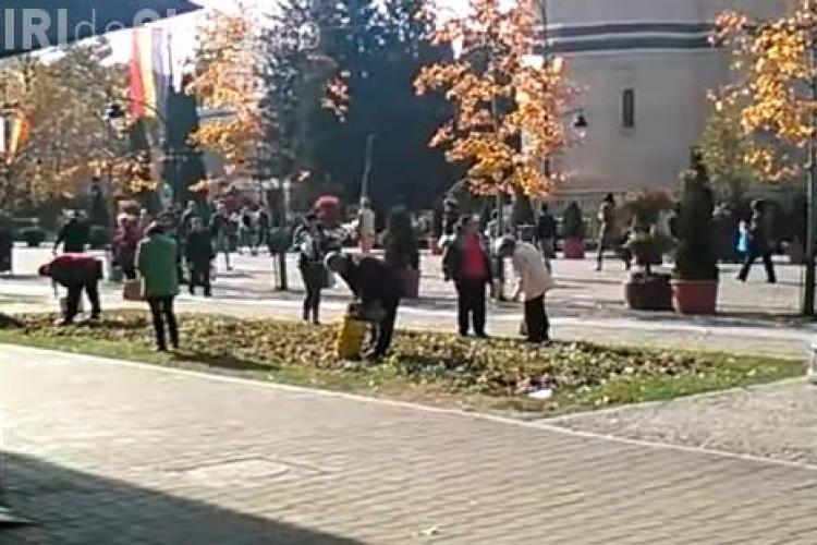 Enoriașii care au mers în pelerinaj la moaștele Sfintei Parascheva s-au apucat să culeagă florile din centrul Iașiului VIDEO