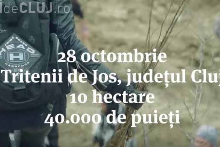 Cluj: Pădurea Transilvania va fi împădurită pe 10 hectare. Se caută voluntari