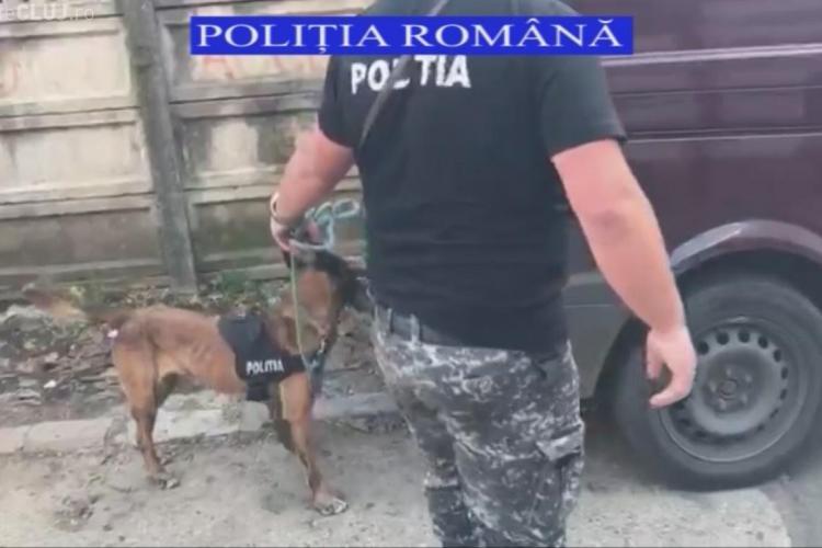 Razie de amploare în Piața Mărăști! Trei infractori căutați au fost depistați de polițiști VIDEO