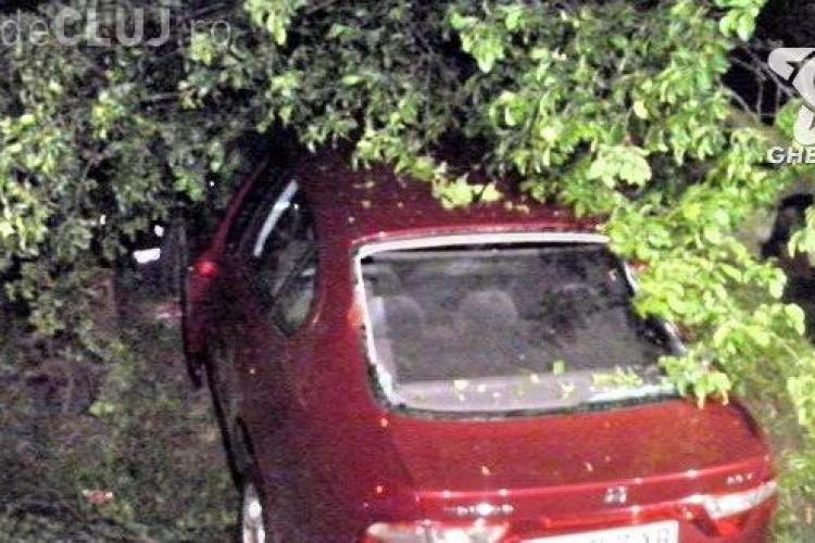Viteza și neatenția fac victime la Cluj! Un șofer a fost rănit grav după ce a intrat cu mașina într-un copac